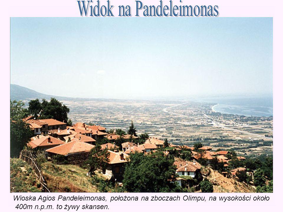 Wioska Agios Pandeleimonas, położona na zboczach Olimpu, na wysokości około 400m n.p.m. to żywy skansen.