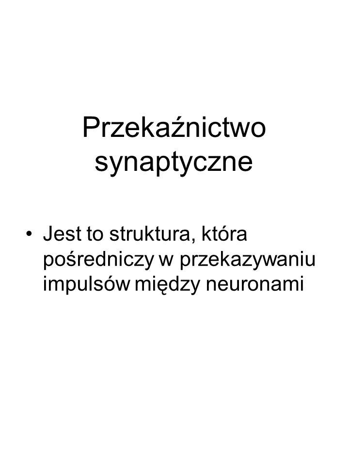 Przekaźnictwo synaptyczne Jest to struktura, która pośredniczy w przekazywaniu impulsów między neuronami