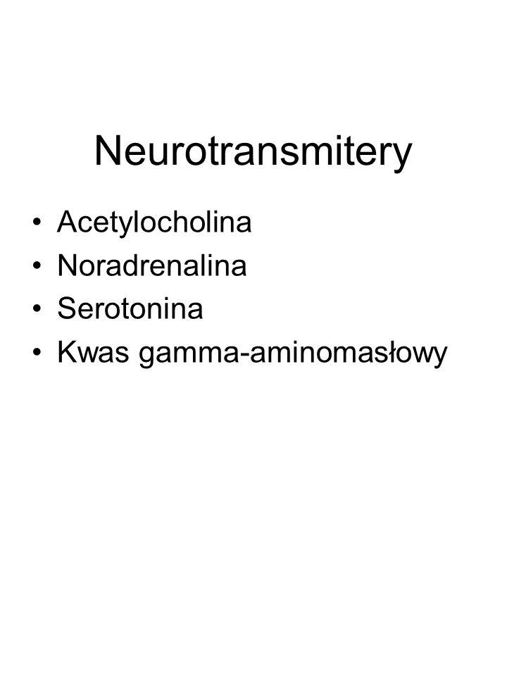 Neurotransmitery Acetylocholina Noradrenalina Serotonina Kwas gamma-aminomasłowy