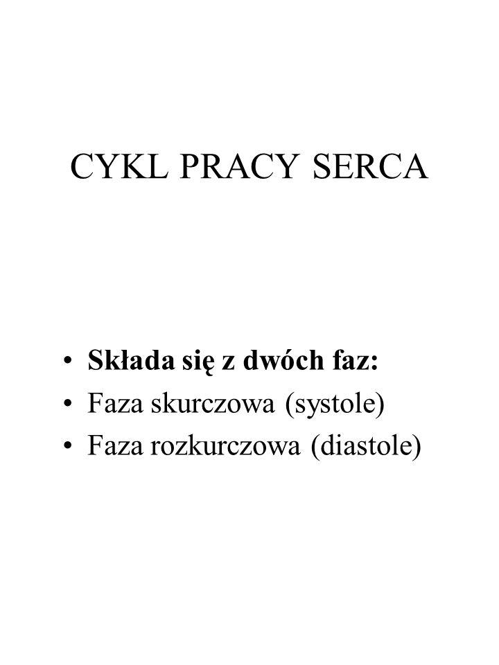 CYKL PRACY SERCA Składa się z dwóch faz: Faza skurczowa (systole) Faza rozkurczowa (diastole)