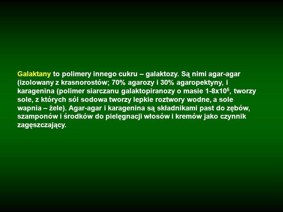 Galaktany to polimery innego cukru – galaktozy. Są nimi agar-agar (izolowany z krasnorostów; 70% agarozy i 30% agaropektyny, i karagenina (polimer sia