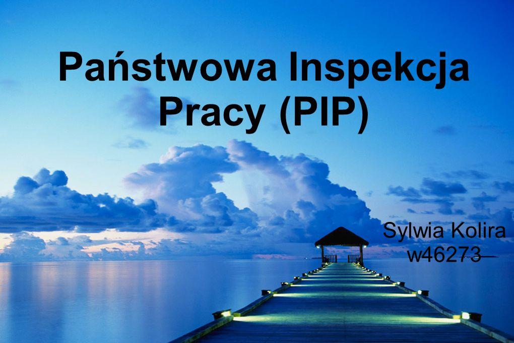 Państwowa Inspekcja Pracy (PIP) Sylwia Kolira w46273