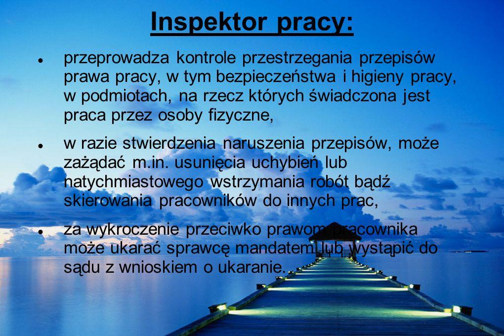Inspektor pracy: przeprowadza kontrole przestrzegania przepisów prawa pracy, w tym bezpieczeństwa i higieny pracy, w podmiotach, na rzecz których świa