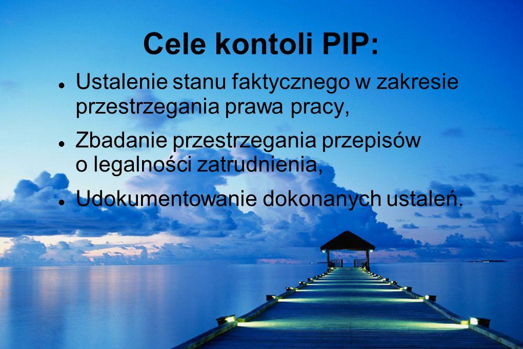 Cele kontoli PIP: Ustalenie stanu faktycznego w zakresie przestrzegania prawa pracy, Zbadanie przestrzegania przepisów o legalności zatrudnienia, Udok