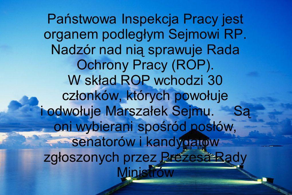 Państwowa Inspekcja Pracy jest organem podległym Sejmowi RP. Nadzór nad nią sprawuje Rada Ochrony Pracy (ROP). W skład ROP wchodzi 30 członków, któryc
