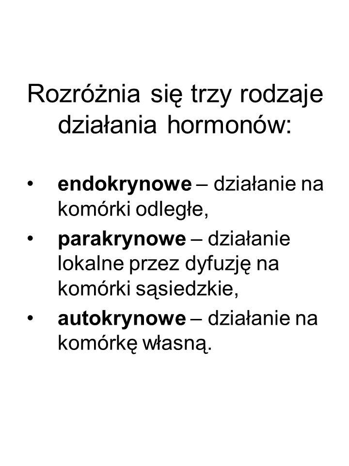 Rozróżnia się trzy rodzaje działania hormonów: endokrynowe – działanie na komórki odległe, parakrynowe – działanie lokalne przez dyfuzję na komórki są
