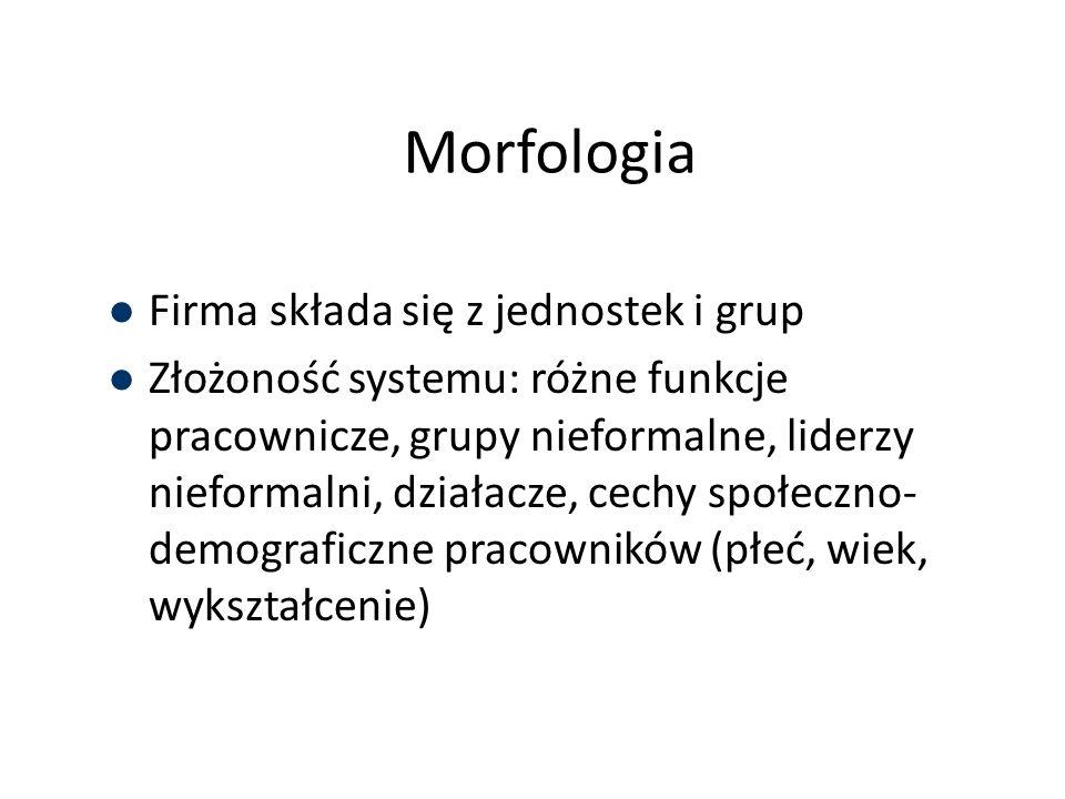 Morfologia Firma składa się z jednostek i grup Złożoność systemu: różne funkcje pracownicze, grupy nieformalne, liderzy nieformalni, działacze, cechy