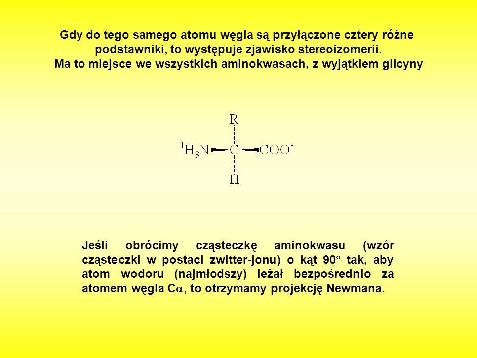Gdy do tego samego atomu węgla są przyłączone cztery różne podstawniki, to występuje zjawisko stereoizomerii. Ma to miejsce we wszystkich aminokwasach