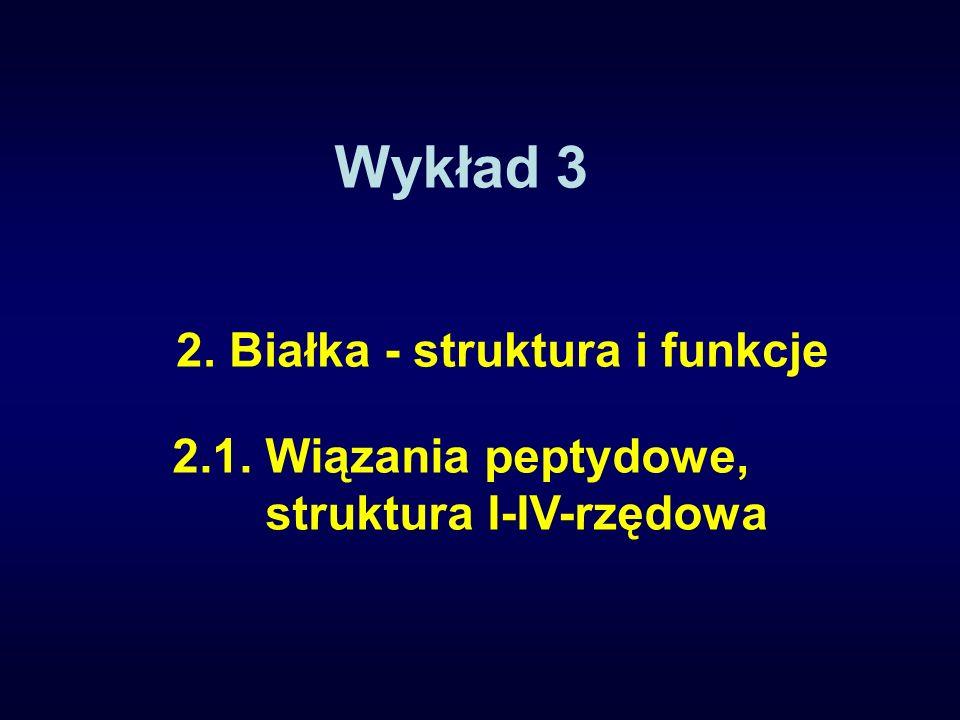 Wykład 3 2.1. Wiązania peptydowe, struktura I-IV-rzędowa 2. Białka - struktura i funkcje