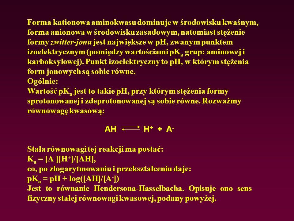 Forma kationowa aminokwasu dominuje w środowisku kwaśnym, forma anionowa w środowisku zasadowym, natomiast stężenie formy zwitter-jonu jest największe