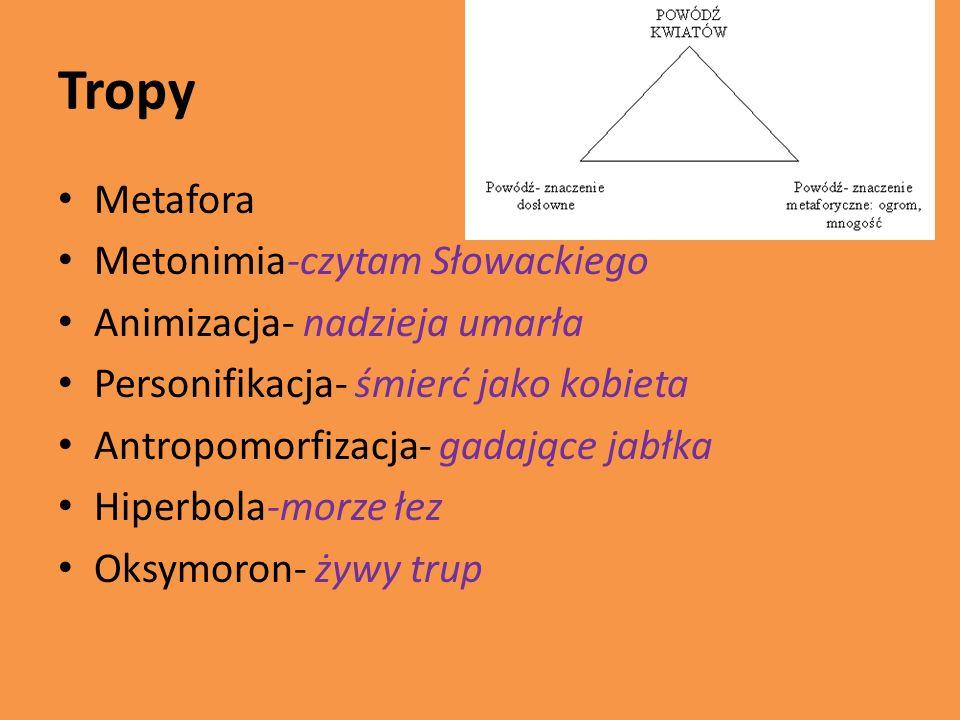 Tropy Metafora Metonimia-czytam Słowackiego Animizacja- nadzieja umarła Personifikacja- śmierć jako kobieta Antropomorfizacja- gadające jabłka Hiperbo