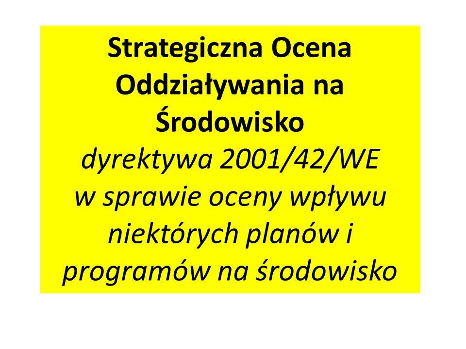 Podstawowe definicje (2) Właściwe organy Organy właściwe do wydania decyzji o zezwoleniu na inwestycję.