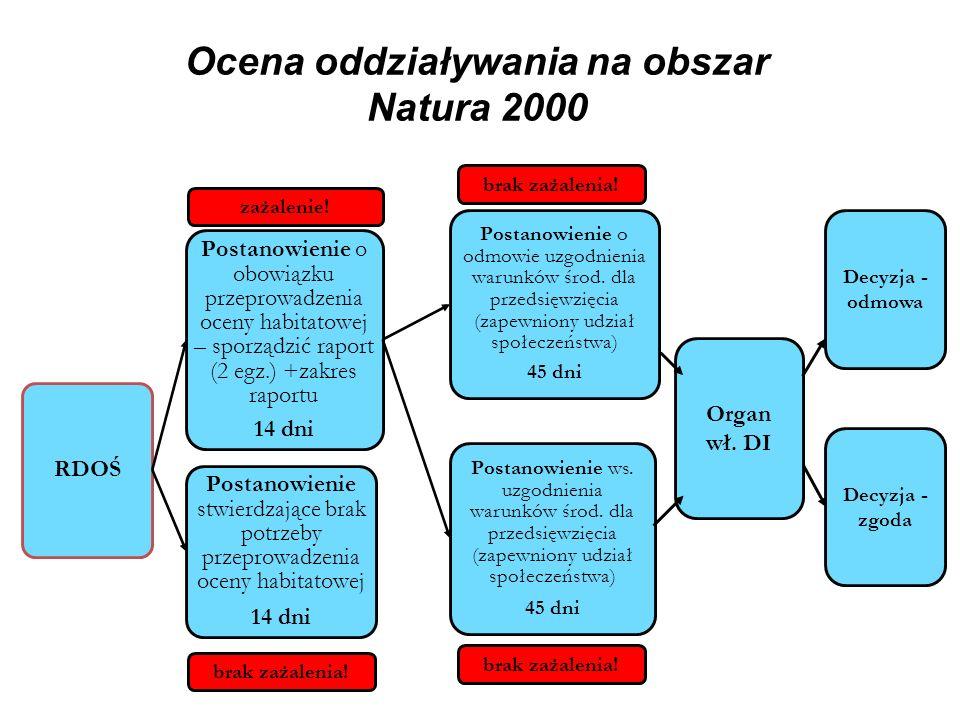 Ocena oddziaływania na obszar Natura 2000 RDOŚ Postanowienie o obowiązku przeprowadzenia oceny habitatowej – sporządzić raport (2 egz.) +zakres raport