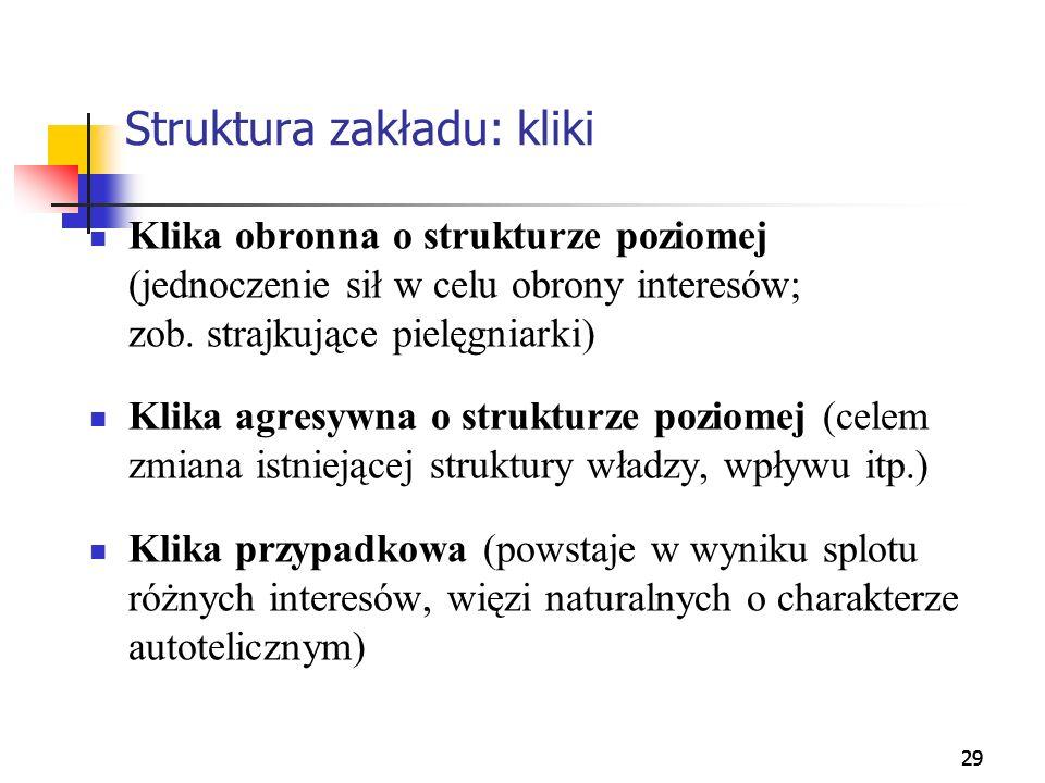 29 Struktura zakładu: kliki Klika obronna o strukturze poziomej (jednoczenie sił w celu obrony interesów; zob. strajkujące pielęgniarki) Klika agresyw