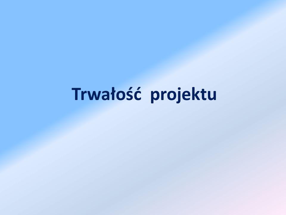 Trwałość projektu