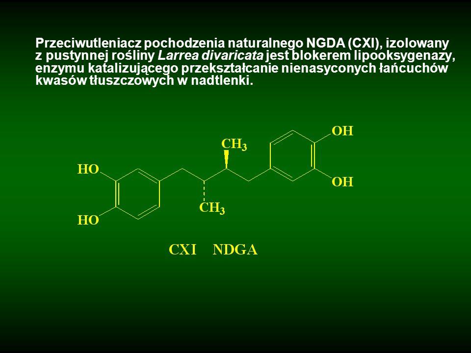 Przeciwutleniacz pochodzenia naturalnego NGDA (CXI), izolowany z pustynnej rośliny Larrea divaricata jest blokerem lipooksygenazy, enzymu katalizujące