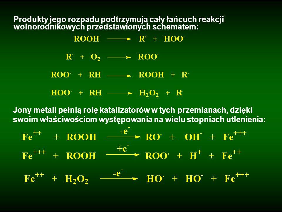 Produkty jego rozpadu podtrzymują cały łańcuch reakcji wolnorodnikowych przedstawionych schematem: Jony metali pełnią rolę katalizatorów w tych przemi