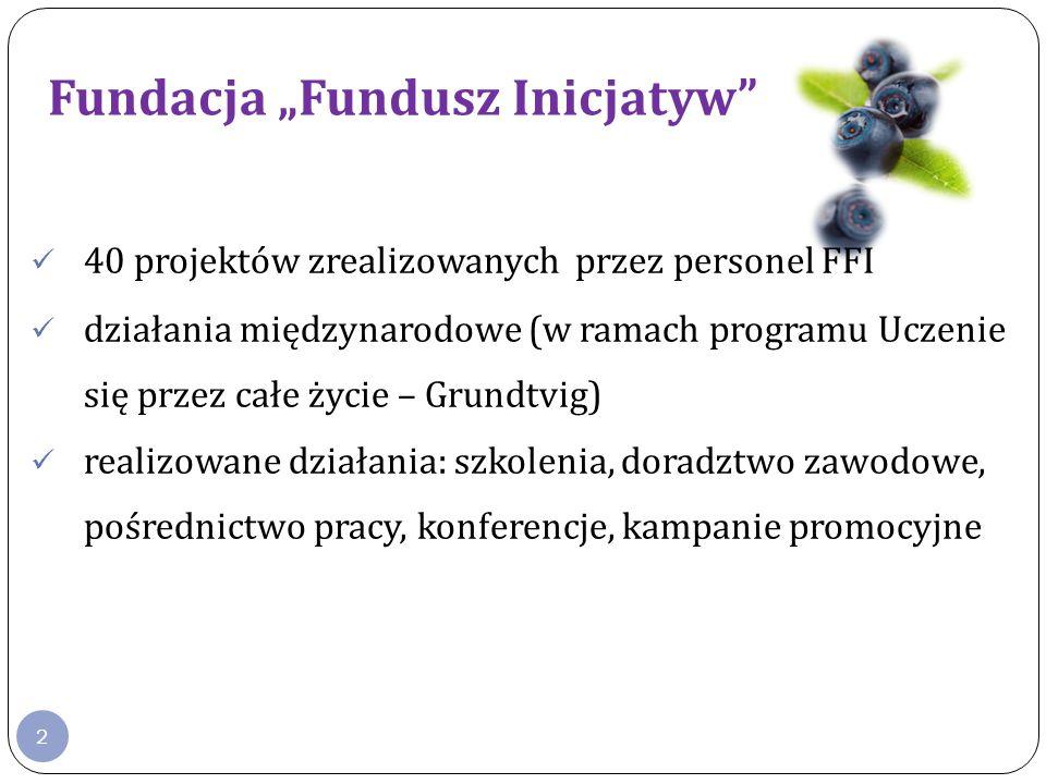 2 Fundacja Fundusz Inicjatyw www.ffi.org.pl 40 projektów zrealizowanych przez personel FFI działania międzynarodowe (w ramach programu Uczenie się przez całe życie – Grundtvig) realizowane działania: szkolenia, doradztwo zawodowe, pośrednictwo pracy, konferencje, kampanie promocyjne www.ffi.org.pl