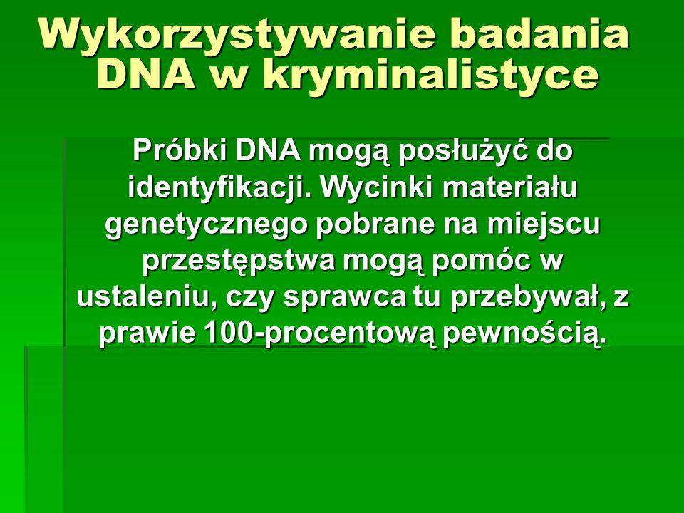 Wykorzystywanie badania DNA w kryminalistyce Próbki DNA mogą posłużyć do identyfikacji. Wycinki materiału genetycznego pobrane na miejscu przestępstwa