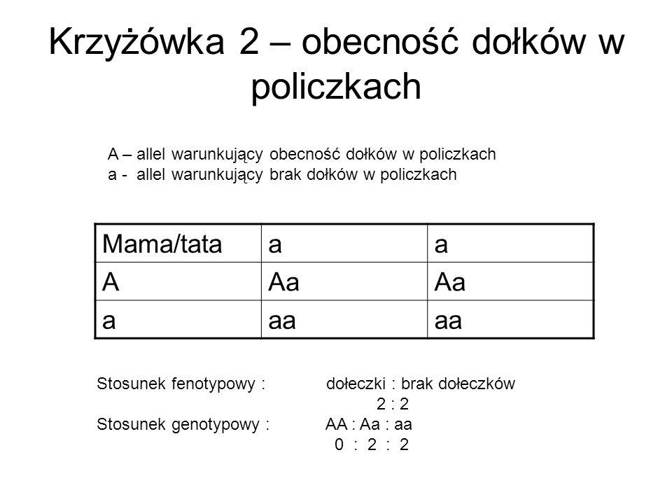 Krzyżówka 2 – obecność dołków w policzkach Mama/tataaa AAa aaa A – allel warunkujący obecność dołków w policzkach a - allel warunkujący brak dołków w