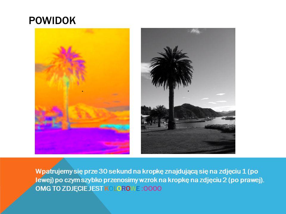 POWIDOK Wpatrujemy się prze 30 sekund na kropkę znajdującą się na zdjęciu 1 (po lewej) po czym szybko przenosimy wzrok na kropkę na zdjęciu 2 (po prawej).