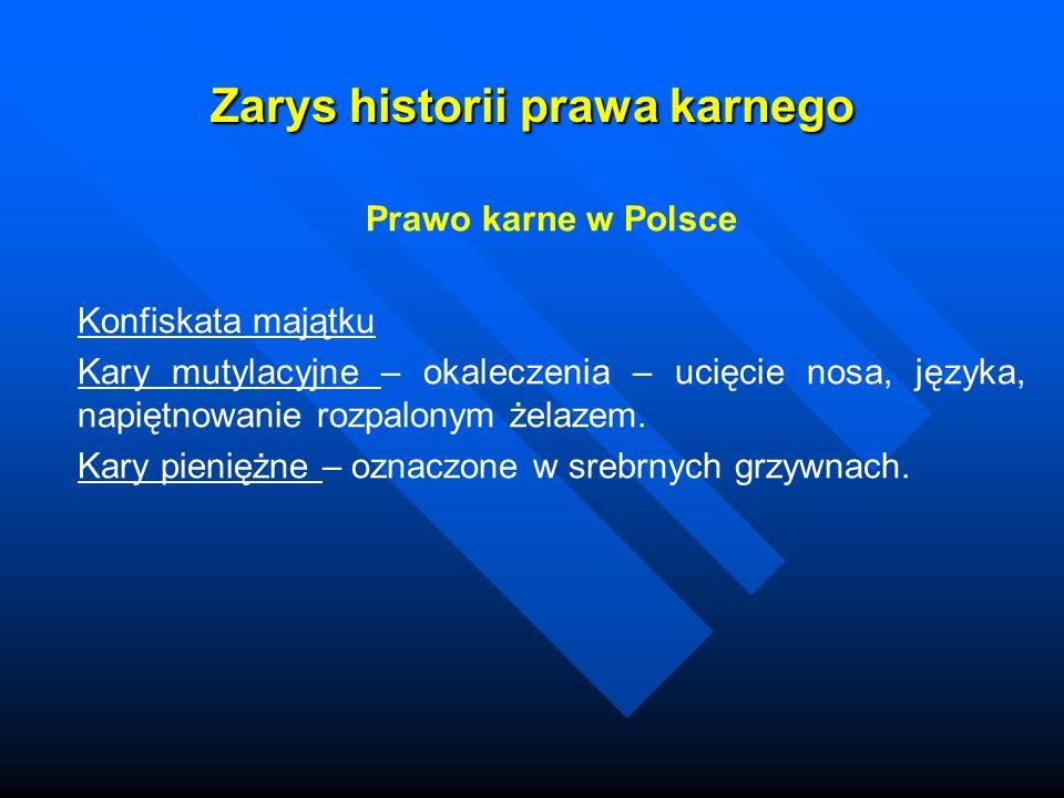 Zarys historii prawa karnego Prawo karne w Polsce Konfiskata majątku Kary mutylacyjne – okaleczenia – ucięcie nosa, języka, napiętnowanie rozpalonym ż