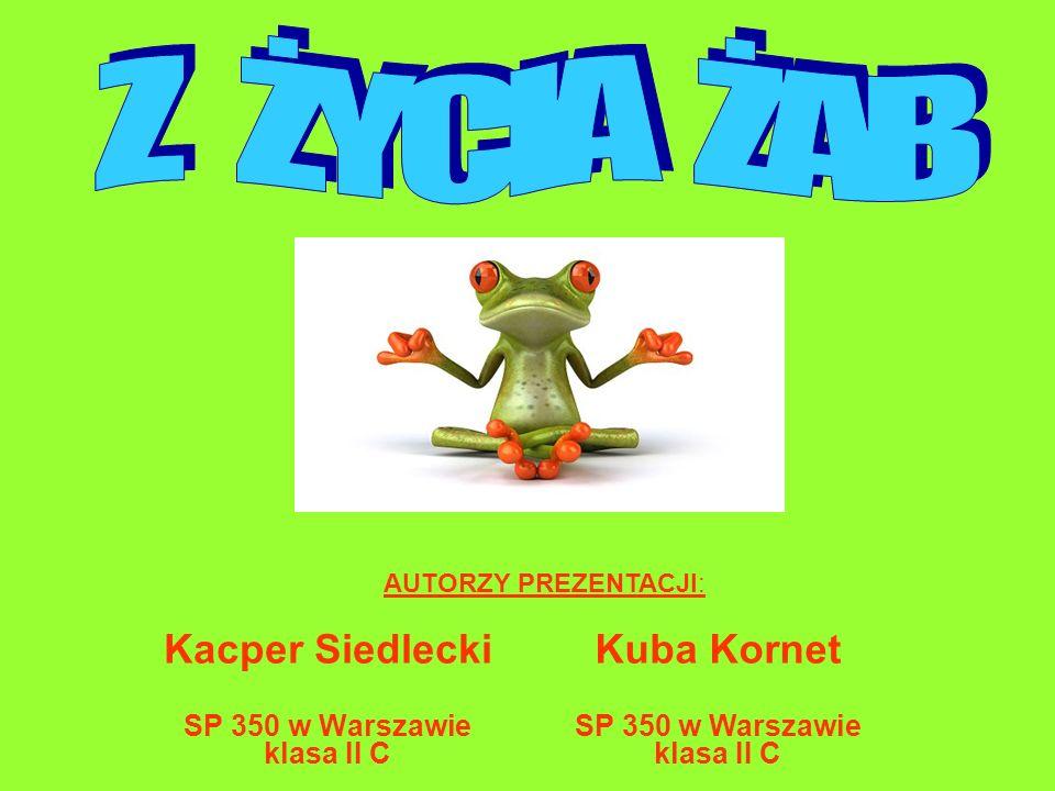 Kacper Siedlecki SP 350 w Warszawie klasa II C AUTORZY PREZENTACJI: Kuba Kornet SP 350 w Warszawie klasa II C