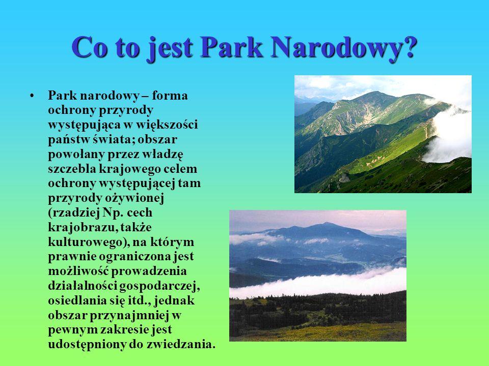 Co to jest Park Narodowy? Park narodowy – forma ochrony przyrody występująca w większości państw świata; obszar powołany przez władzę szczebla krajowe