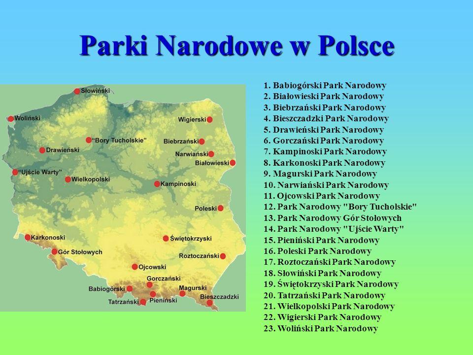 Parki Narodowe w Polsce 1. Babiogórski Park Narodowy 2. Białowieski Park Narodowy 3. Biebrzański Park Narodowy 4. Bieszczadzki Park Narodowy 5. Drawie