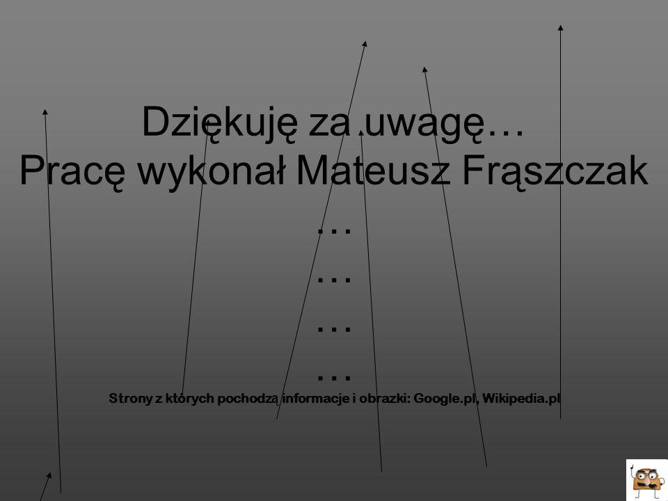Dziękuję za uwagę… Pracę wykonał Mateusz Frąszczak … … … … Strony z których pochodz ą informacje i obrazki: Google.pl, Wikipedia.pl