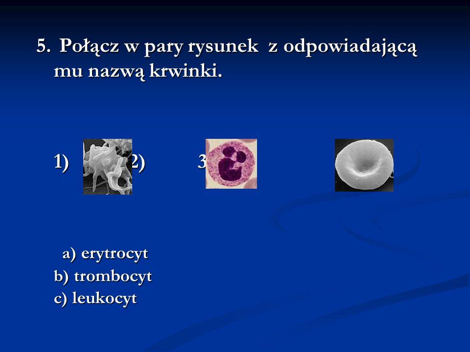 Odpowiedzi: 1.Erytrocyty (czerwone), trombocyty (płytki), leukocyty (białe) 2.