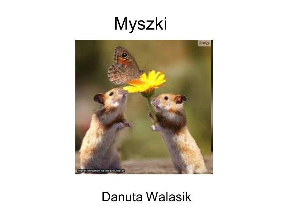 Myszki Danuta Walasik
