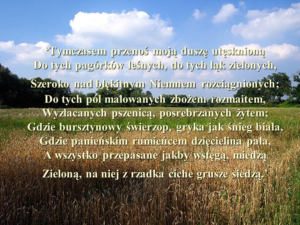 Tymczasem przenoś moją duszę utęsknioną Do tych pagórków leśnych, do tych łąk zielonych, Szeroko nad błękitnym Niemnem rozciągnionych; Do tych pól mal