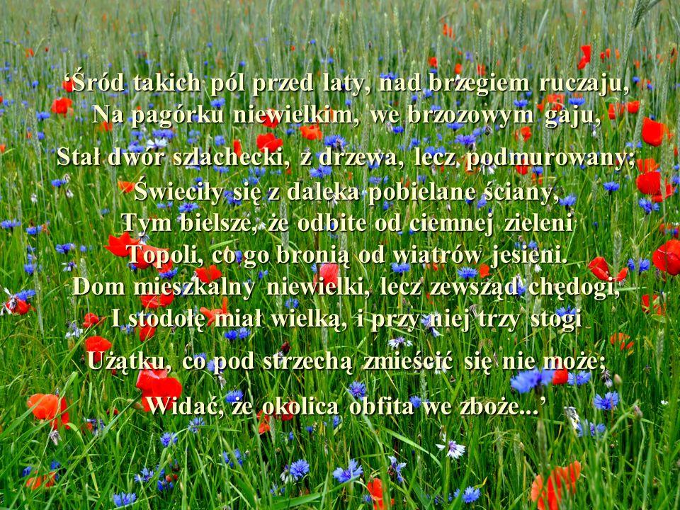 Śród takich pól przed laty, nad brzegiem ruczaju, Na pagórku niewielkim, we brzozowym gaju, Stał dwór szlachecki, z drzewa, lecz podmurowany; Świeciły