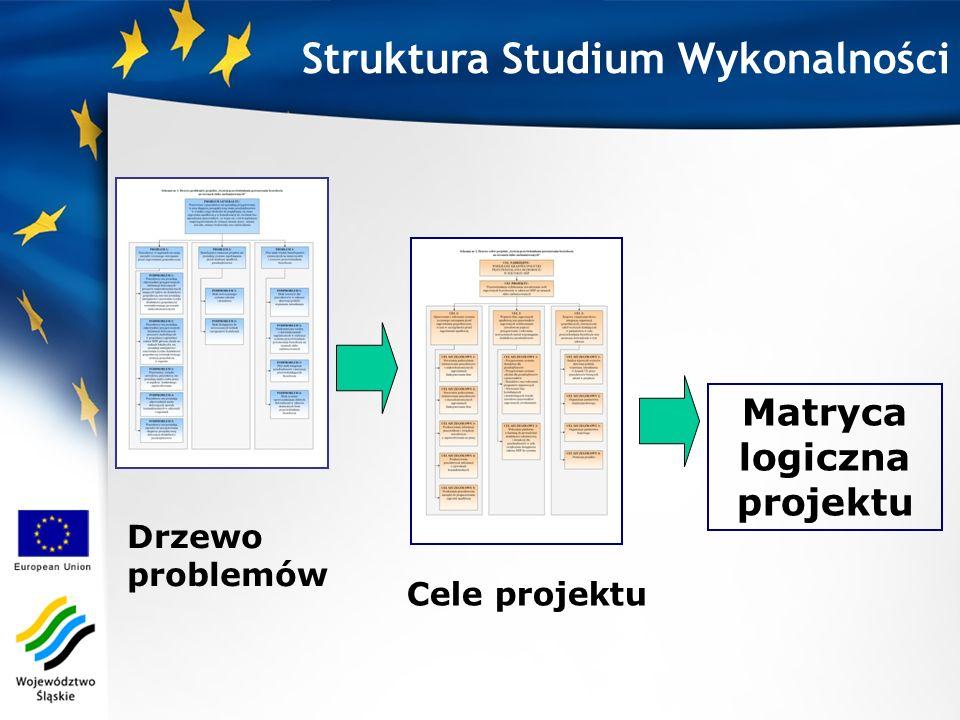 Matryca logiczna projektu Drzewo problemów Cele projektu Struktura Studium Wykonalności