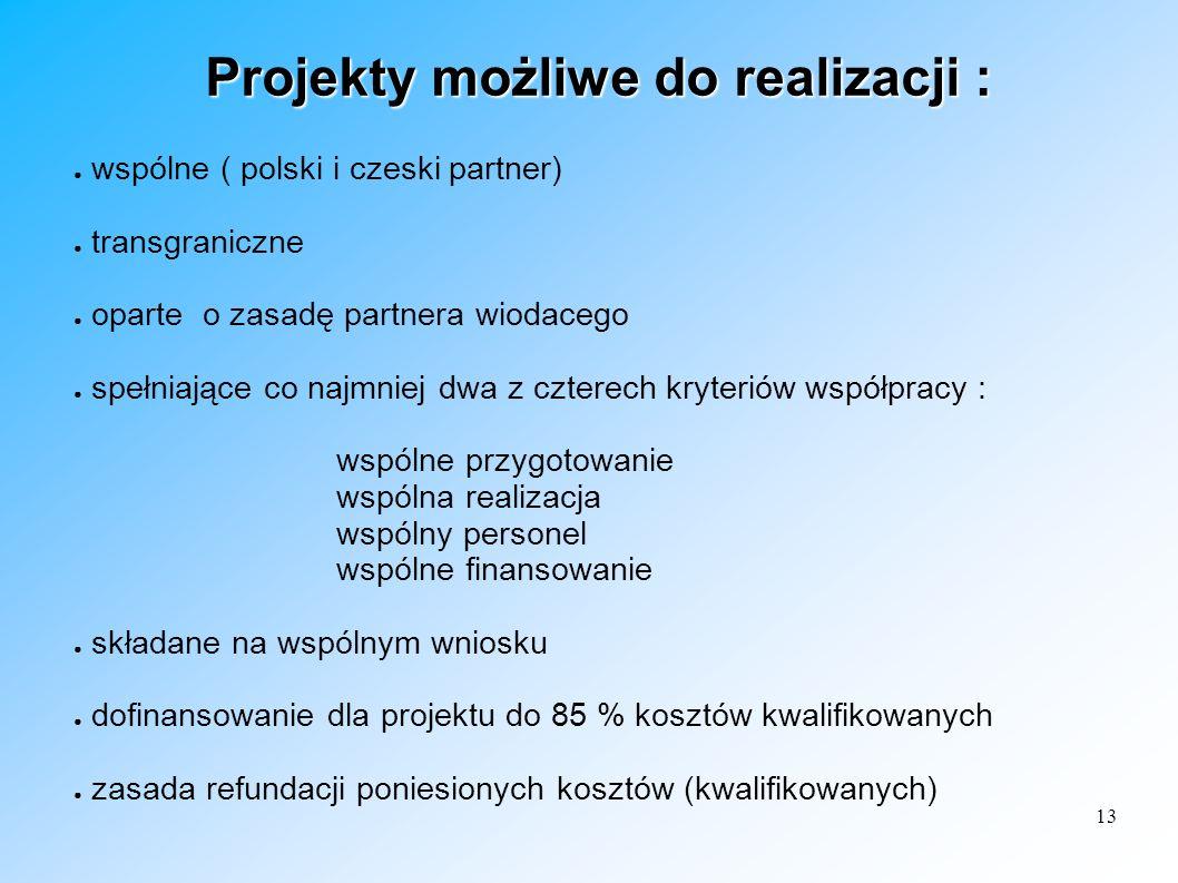 13 Projekty możliwe do realizacji : wspólne ( polski i czeski partner) transgraniczne oparte o zasadę partnera wiodacego spełniające co najmniej dwa z