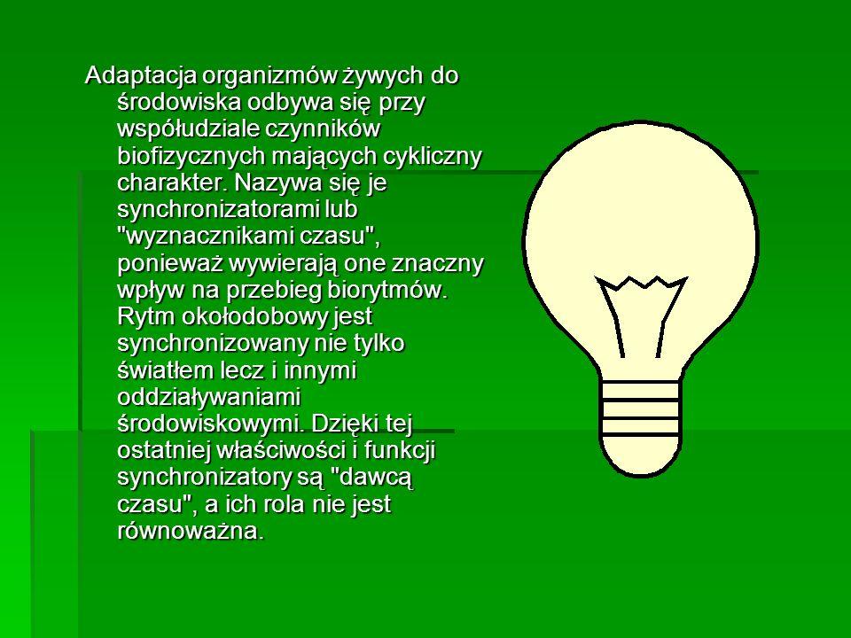 Adaptacja organizmów żywych do środowiska odbywa się przy współudziale czynników biofizycznych mających cykliczny charakter. Nazywa się je synchroniza