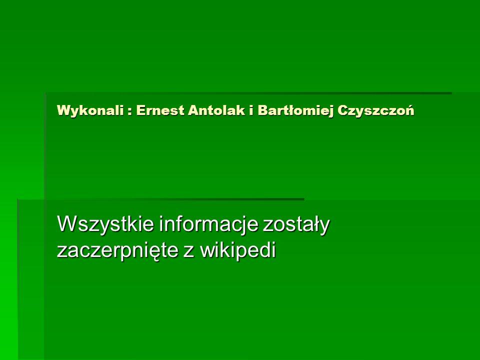 Wykonali : Ernest Antolak i Bartłomiej Czyszczoń Wszystkie informacje zostały zaczerpnięte z wikipedi