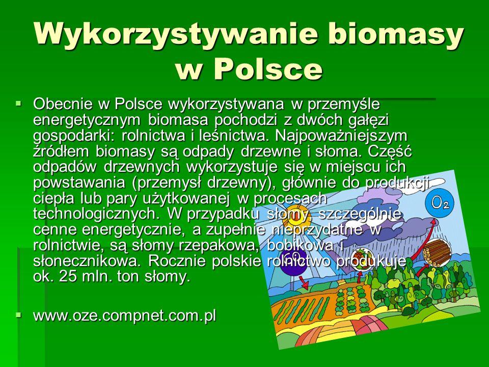 Wykorzystywanie biomasy w Polsce Obecnie w Polsce wykorzystywana w przemyśle energetycznym biomasa pochodzi z dwóch gałęzi gospodarki: rolnictwa i leś