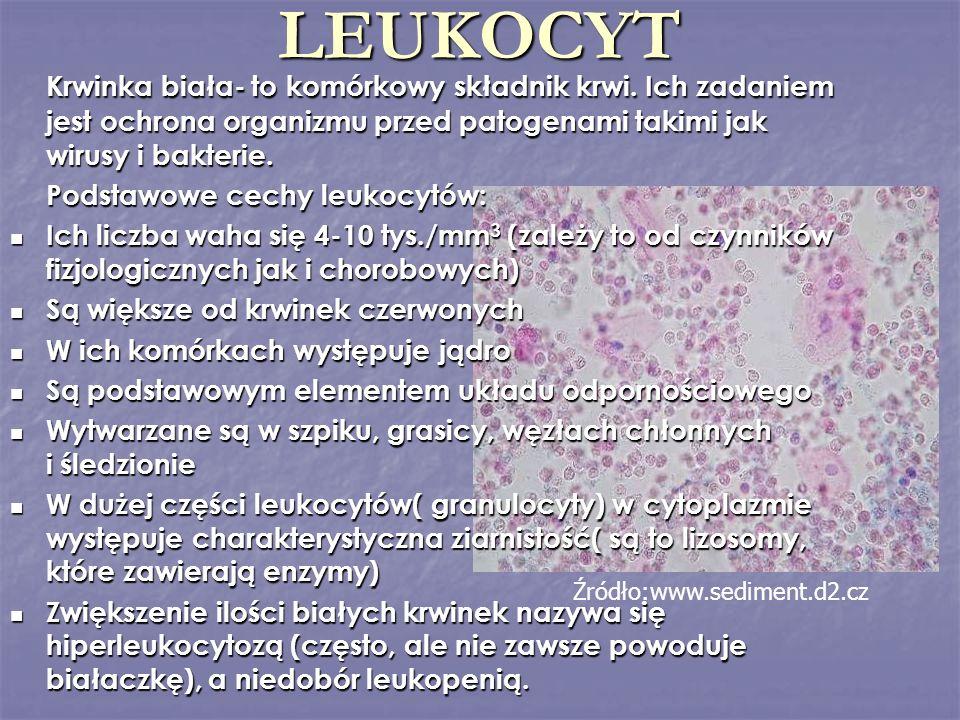 LEUKOCYT Krwinka biała- to komórkowy składnik krwi. Ich zadaniem jest ochrona organizmu przed patogenami takimi jak wirusy i bakterie. Podstawowe cech