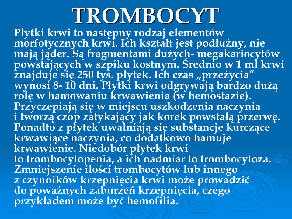 TROMBOCYT Płytki krwi to następny rodzaj elementów morfotycznych krwi. Ich kształt jest podłużny, nie mają jąder. Są fragmentami dużych- megakariocytó