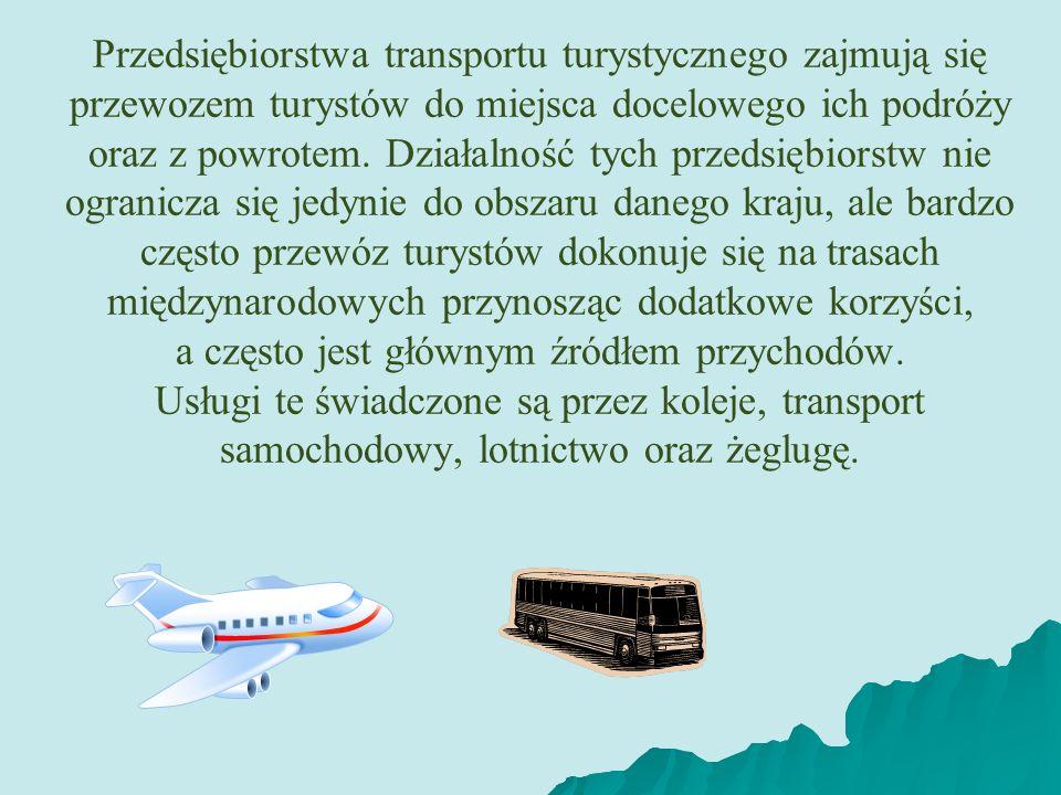 Przedsiębiorstwa transportu turystycznego zajmują się przewozem turystów do miejsca docelowego ich podróży oraz z powrotem. Działalność tych przedsięb