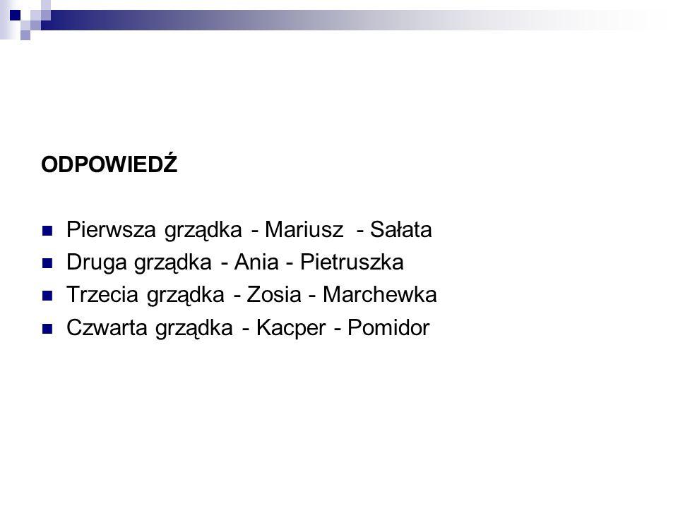 ODPOWIEDŹ Pierwsza grządka - Mariusz - Sałata Druga grządka - Ania - Pietruszka Trzecia grządka - Zosia - Marchewka Czwarta grządka - Kacper - Pomidor