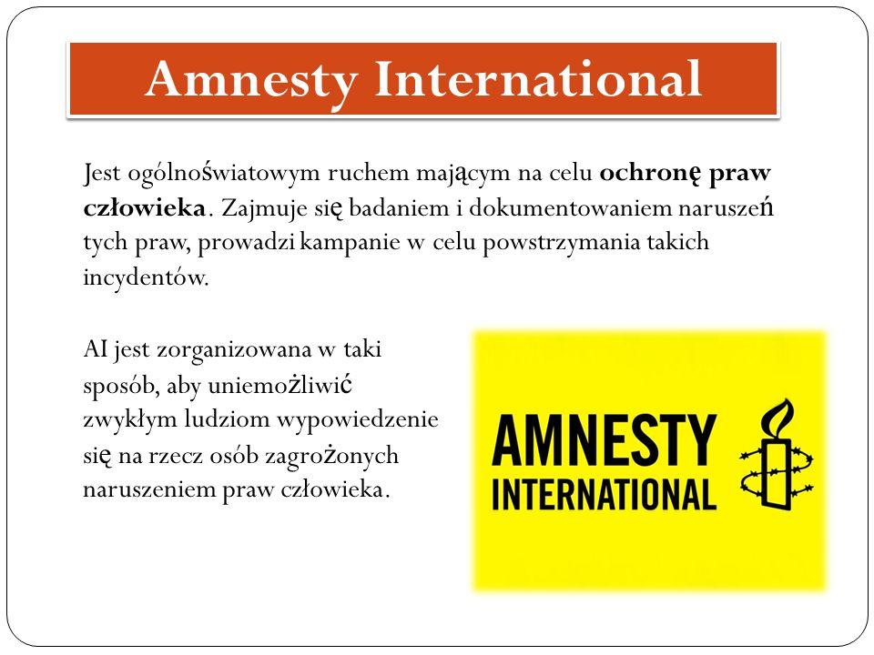 Jest ogólno ś wiatowym ruchem maj ą cym na celu ochron ę praw człowieka. Zajmuje si ę badaniem i dokumentowaniem narusze ń tych praw, prowadzi kampani