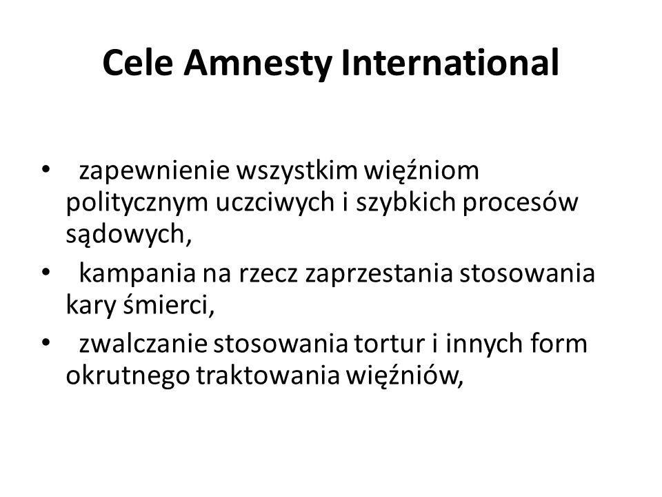 Cele Amnesty International zapewnienie wszystkim więźniom politycznym uczciwych i szybkich procesów sądowych, kampania na rzecz zaprzestania stosowani