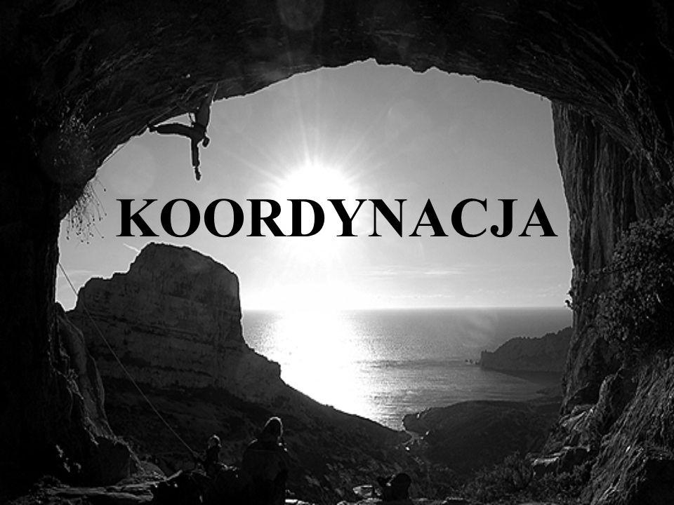 KOORDYNACJA