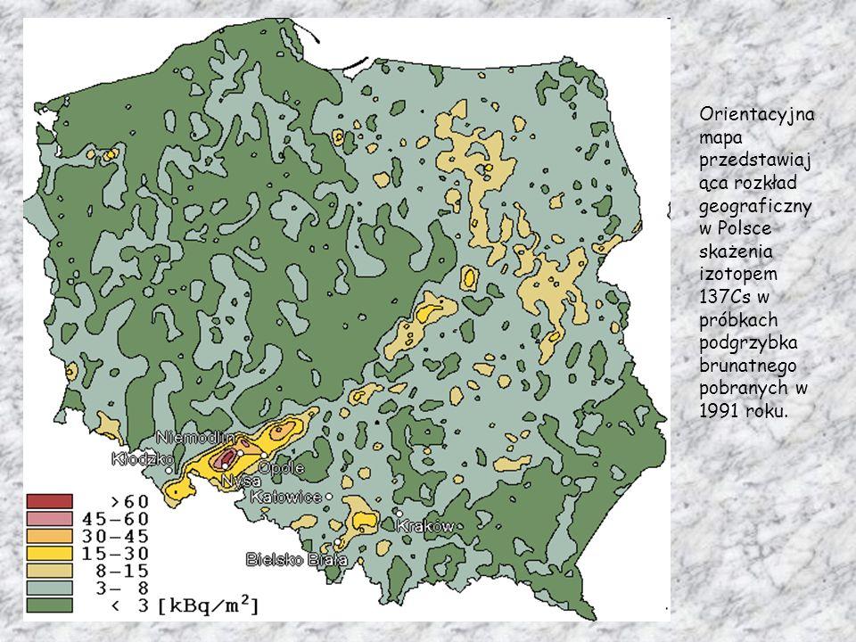 Orientacyjna mapa przedstawiaj ąca rozkład geograficzny w Polsce skażenia izotopem 137Cs w próbkach podgrzybka brunatnego pobranych w 1991 roku.