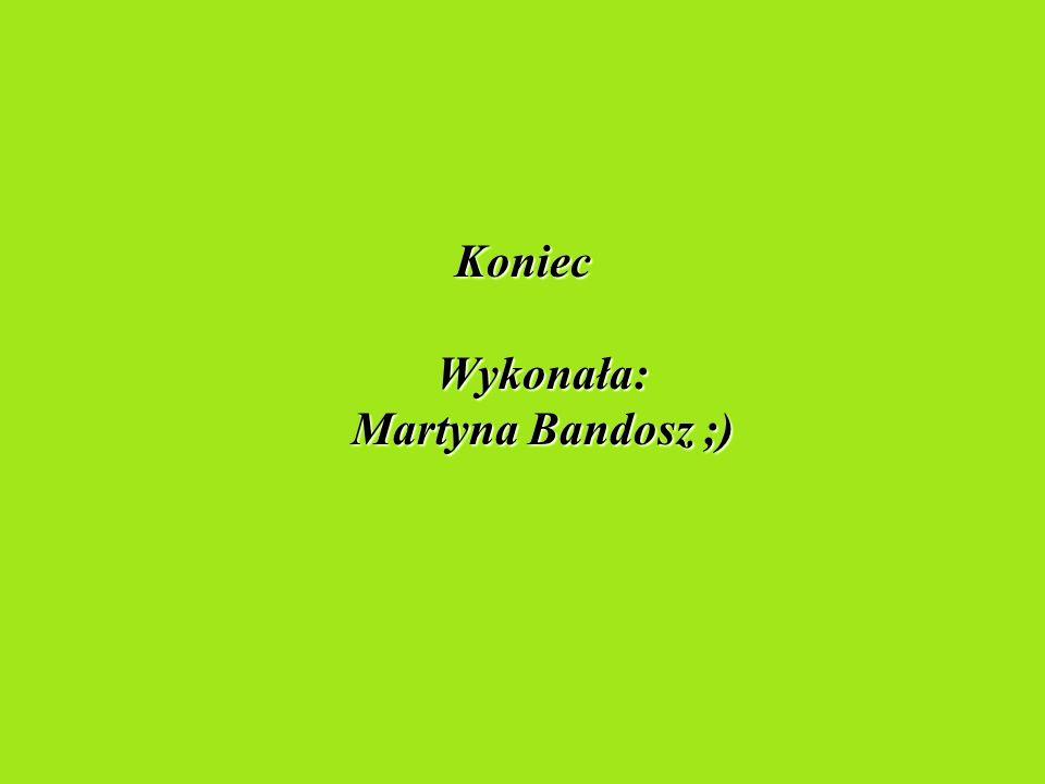 Koniec Wykonała: Martyna Bandosz ;)