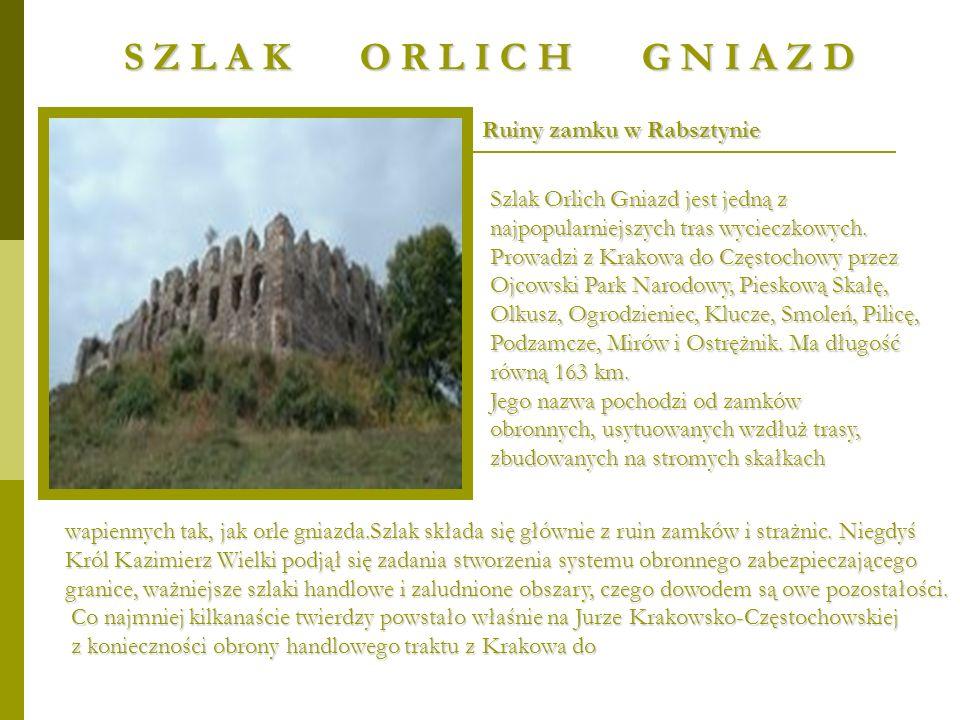 Ruiny zamku w Rabsztynie Szlak Orlich Gniazd jest jedną z najpopularniejszych tras wycieczkowych. Prowadzi z Krakowa do Częstochowy przez Ojcowski Par