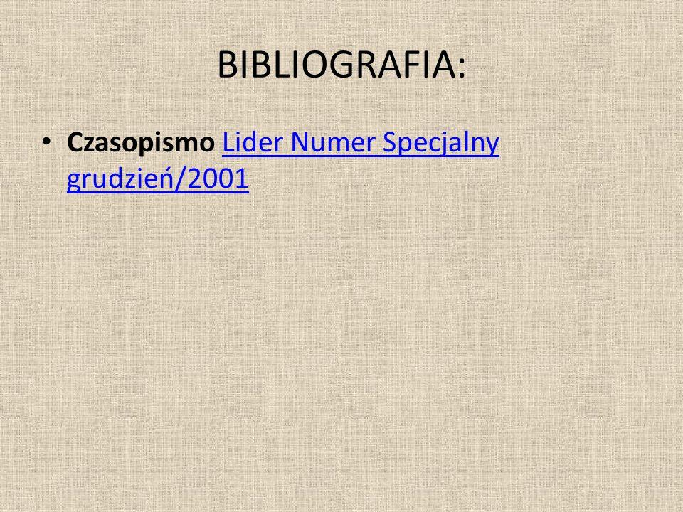 BIBLIOGRAFIA: Czasopismo Lider Numer Specjalny grudzień/2001Lider Numer Specjalny grudzień/2001